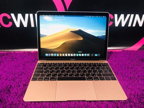 Apple MacBook 12inch Retina 2017 (арт.13663)