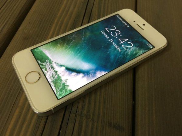 Apple Iphone 5s 64 Silver (арт.14171)
