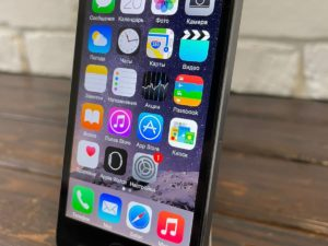 IPhone 5s 16gb SG No Touch ID (арт. 32118)